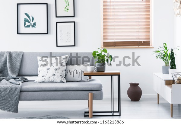 Real photo of end table with fresh plant and tea cup standing by grey couch with cushions and blanket in white sitting room interior with posters and window
