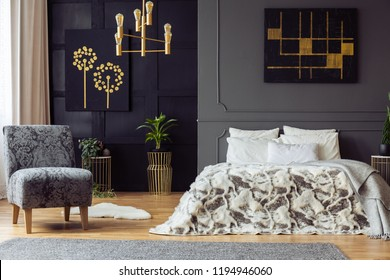 Miraculous Royalty Free Bedroom Gold Stock Images Photos Vectors Machost Co Dining Chair Design Ideas Machostcouk