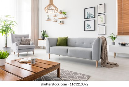Real photo of grey sofa with green cushion and blanket standing in white living room interior with simple posters, fresh plants, armchair and wooden coffee table with open book and tea mug
