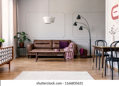 Real photo of light grey sitting room interior with brown couch with blanket and violet pillow, coffee table with two tea cups, metal lamp and molding on wall