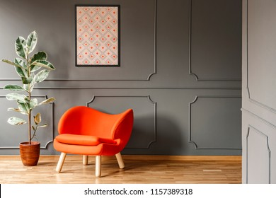 Real photo of open space dark grey living room interior with poster hanging on wall with wainscoting, orange armchair and fresh potted plant. Paste your lamp here