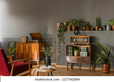 Real photo of a red armchair standing in front of a small cupboard with books and radio, shelf with plants and a gramophone in vintage living room interior