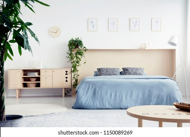 Real photo of white bedroom interior with double bed with blue sheets and box bedhead, fresh plants and cupboard with books and glass vases