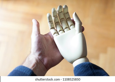 real and prosthetic hand