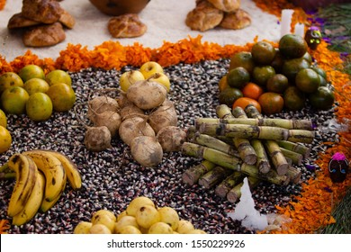 a real rural traditional mexican altar for day of the dead with marigold petals, yellow flowers, oranges, guava, bananas, Mexican yam bean, Mexican turnip, jicama, bread on maize