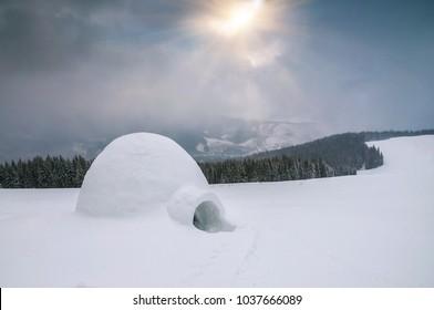 real snow igloo under sunlight in winter Carpathians mountain
