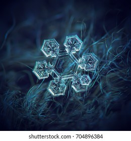 Real snowflake at high magnification. Macro photo of small snow crystal with short, broad arms with complex inner pattern and transparent central hexagon. Snowflake glowing on dark blue background.