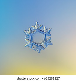 Real snowflake macro photo: snow crystal of star plate type with six short, broad arms with glossy surface and large, flat central hexagon. Snowflake glittering on blue - yellow gradient background.
