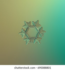 Real snowflake macro photo: star plate snow crystal with six short, glossy arms and big, flat and empty central hexagon. Snowflake glittering on smooth brown - green gradient background.