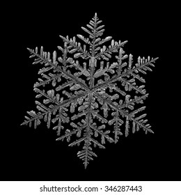 Real snowflake macro photo: very large fernlike dendrite crystal, around 8 millimeters from tip to tip. Monochrome version, isolated on black background for design