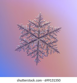 Real snowflake macro photo: very large fernlike dendrite snow crystal with fine hexagonal symmetry, complex, elegant shape, and six long ornate arms with lots of side branches.