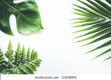 Real tropical leaves set pattern backgrounds on white.flat lay design