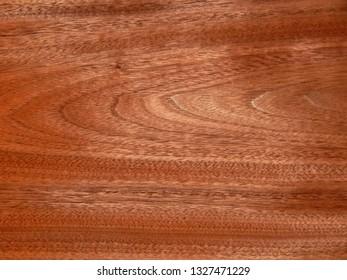 Real wood veneer American walnut. Material for interior and furniture