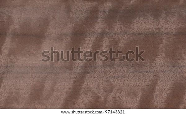 Real World Wood Seamless Texture Australian walnut - Orientalwood Endiandra palmerstonii