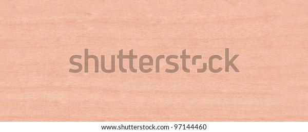 Real World Wood Seamless Texture Yellow birch Betula alleghanensis