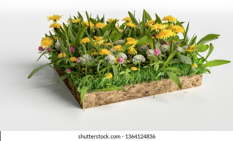 realistic 3D rendering cutaway terrain floor, 3D Illustration soil ground cross section with earth land and green grass with flowers