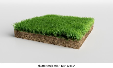 realistic 3D rendering cutaway terrain floor, 3D Illustration soil ground cross section with earth land and green grass
