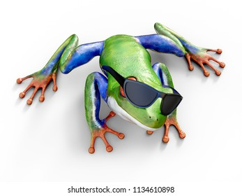 Realistic 3D rendering of a green, blue and orange colored red-eyed tree frog, Agalychnis callidryas, sitting on a white floor and wearing sunglasses, looking up.
