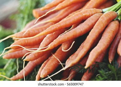 Realistic Carrots at a farmers market outdoors