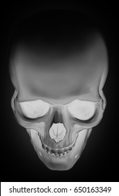 Realistic cool graphic detailed white human skull on black background