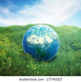 Realistic Earth in a green field of grass