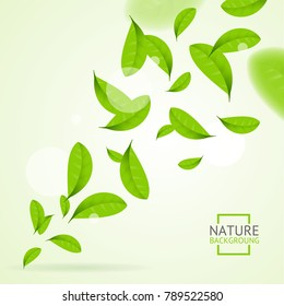 Realistic Fly Green Leaves Pattern Background Bright Nature Foliage Movement for Poster. illustration