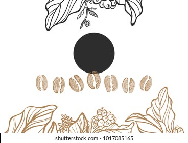 Realistic set of coffee bean and branch of tree with leaf and flower on white background. Organic food. Vector collection. Sketch design natural motifs. Illustration isolated and grouped