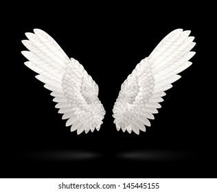 Realistic White Wings on black background. See also vector version