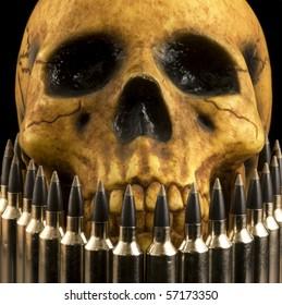 realistic-looking human skull model seen behind a row of rifle cartridges.