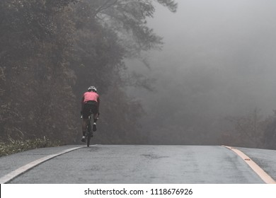 Rear side of Asian cyclist in pink jersey ride his bicycle up high on hill in bad weather day. In cold, mist, raining and windy day he cycling to complete his mission.