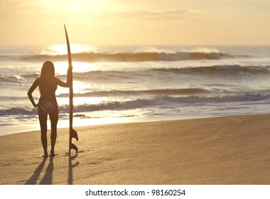 Rear view of a beautiful young woman surfer girl in bikini with surfboard at a beach at sunset or sunrise