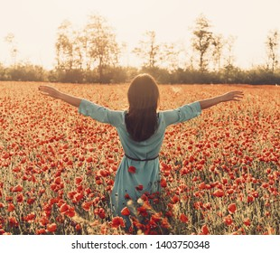 Rear view of brunette young woman wearing in blue dress walking with raised arms in flower meadow and enjoying of freedom in summer.