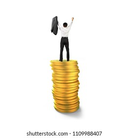 Rear view of businessman standing and cheering on top of golden coins stacks, isolated on white background, concept of business financial growth success.