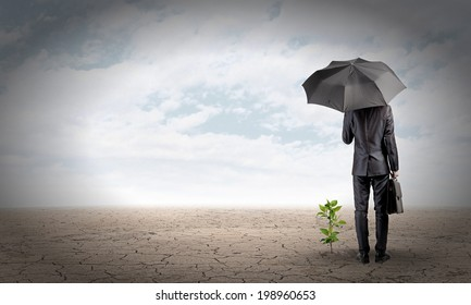 Rear view of businessman with umbrella protecting sprout