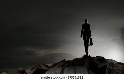 Rear view of businesswoman against sunrise scene