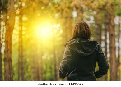 Rear view of casual female looking at morning sunlight through trees autumn park or forest, woman in fall season environment scenery from behind.