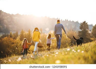 A rear view of family with two small children and a dog on a walk in autumn nature.