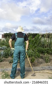 rear view of a farmer looking at his urban vegetable garden standing wearing a hat and a dickey holding a hoeing on his right hand