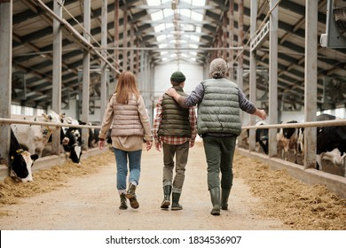 Rear view of father pointing at cows and sharing farm experience with son, whole family walking along cowshed together