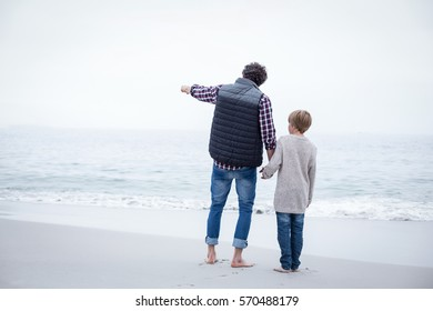 Rear view of father pointing while standing with son at sea shore