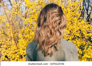 Rear view of the female hairstyle long wavy bob. Young woman stands against a yellow blooming spring bush, her hair shining in the sun.