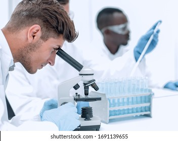 rear view. a group of scientists at the laboratory table