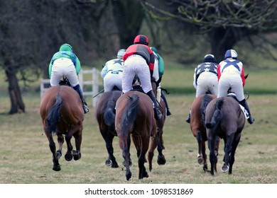 Rear view of horses racing at Holderness Hunt Point To Point : Dalton Park, East Yorkshire, UK : 25 March 2018 : Pic Mick Atkins