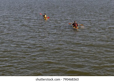 Rear view of kayakers  paddling  in the sea.