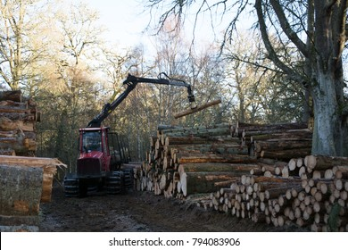 The rear view of a machine working in a woodland adding a log onto a stack of logs, and surrounded by other very large stacks of logs