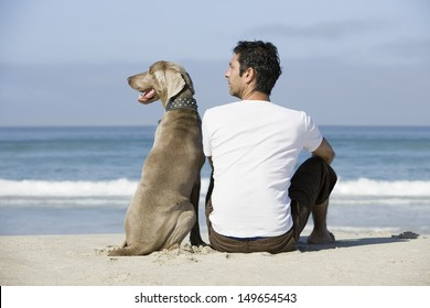Rear view of a man and dog sitting on beach