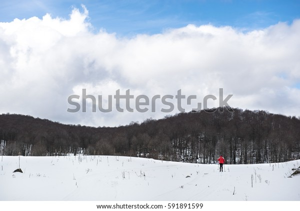 Rear view of a man skiing in winter landscape, Italy