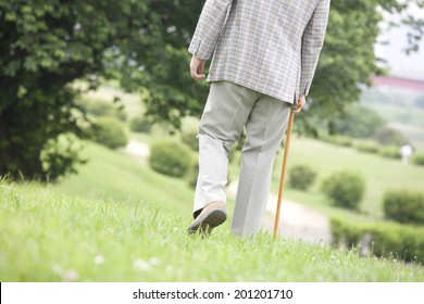 The rear view of the old man walking with a cane in the park