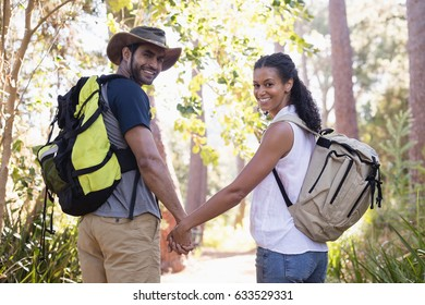 Rear view portrait of young hiking couple holding hands in forest