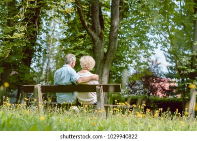 Rear view of a romantic elderly couple enjoying nature while sitting together on a bench in a tranquil day of summer in the park